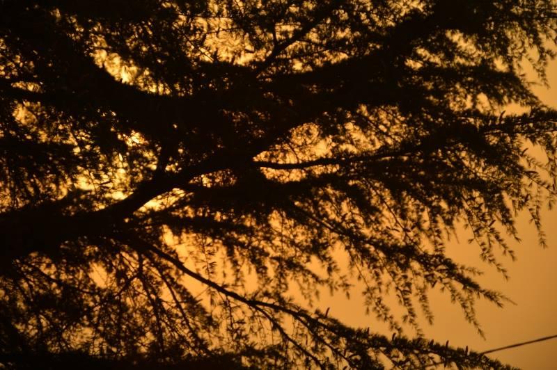 Lumière d'automne (1/6)