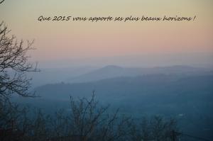 Voeux 2015 (1024x681)