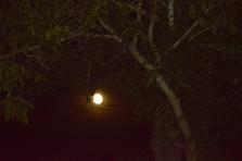 Lune (1024x681)