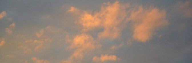 cropped-dsc_0002-1024x681.jpg