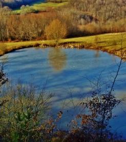 Reflets dans un étang gelé (merci Michèle !)
